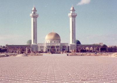 Pavés en queue de paon Tunisi