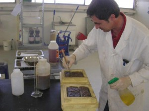 A lab operator testing chemical and physical properties of some porphyry rocks